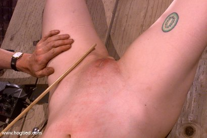 Photo number 12 from Rose and Cowgirl shot for Hogtied on Kink.com. Featuring Rose and Cowgirl in hardcore BDSM & Fetish porn.