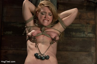 Photo number 2 from Darling gives us BLOODY SCREAMING FUCKING ORGASMS over & over & over again! shot for Hogtied on Kink.com. Featuring Dee Williams in hardcore BDSM & Fetish porn.