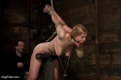 Photo number 6 from Darling gives us BLOODY SCREAMING FUCKING ORGASMS over & over & over again! shot for Hogtied on Kink.com. Featuring Dee Williams in hardcore BDSM & Fetish porn.