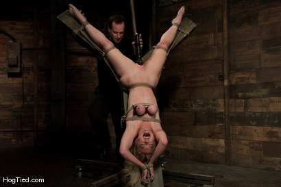 Photo number 9 from Darling gives us BLOODY SCREAMING FUCKING ORGASMS over & over & over again! shot for Hogtied on Kink.com. Featuring Dee Williams in hardcore BDSM & Fetish porn.