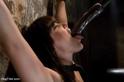 Photo number 6 from Bobbi Starr starts off the New Year screaming in orgasm shot for Hogtied on Kink.com. Featuring Bobbi Starr in hardcore BDSM & Fetish porn.