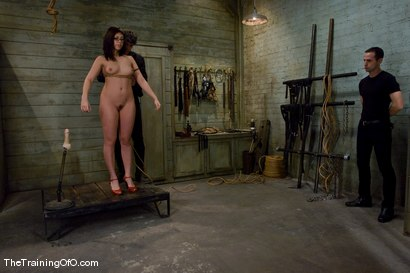 Photo number 8 from The Training of Satine Phoenix, Day One shot for The Training Of O on Kink.com. Featuring Satine Phoenix and Maestro in hardcore BDSM & Fetish porn.