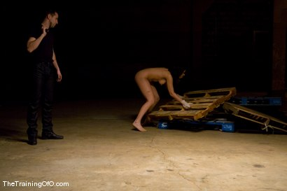Photo number 8 from The Training of Satine Phoenix, Day Two shot for The Training Of O on Kink.com. Featuring Satine Phoenix and Maestro in hardcore BDSM & Fetish porn.