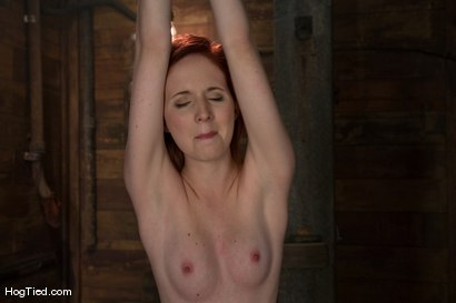 Photo number 1 from Horny girls also cum in small packages: Megan Murray shot for Hogtied on Kink.com. Featuring Megan Murray in hardcore BDSM & Fetish porn.