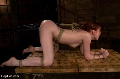 Photo number 11 from Horny girls also cum in small packages: Megan Murray shot for Hogtied on Kink.com. Featuring Megan Murray in hardcore BDSM & Fetish porn.