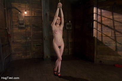 Photo number 2 from Horny girls also cum in small packages: Megan Murray shot for Hogtied on Kink.com. Featuring Megan Murray in hardcore BDSM & Fetish porn.