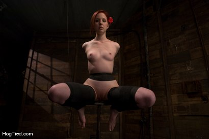 Photo number 3 from Horny girls also cum in small packages: Megan Murray shot for Hogtied on Kink.com. Featuring Megan Murray in hardcore BDSM & Fetish porn.