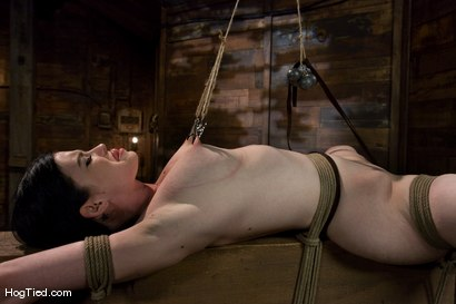 Photo number 10 from Sybil Hawthorne: Retro Beauty LOVES pain to get off shot for Hogtied on Kink.com. Featuring Sybil Hawthorne in hardcore BDSM & Fetish porn.