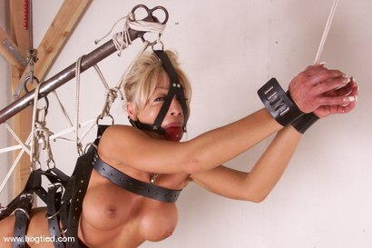 Photo number 11 from Janay shot for Hogtied on Kink.com. Featuring Janay in hardcore BDSM & Fetish porn.