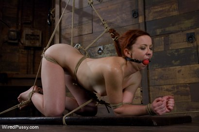 Photo number 11 from Trinity Post returns to Wiredpussy for an explosive update with Claire Adams shot for Wired Pussy on Kink.com. Featuring Claire Adams and Trinity Post in hardcore BDSM & Fetish porn.