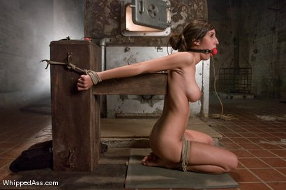 Photo number 6 from Virgin Kink shot for Whipped Ass on Kink.com. Featuring April O'Neil and Aiden Starr in hardcore BDSM & Fetish porn.