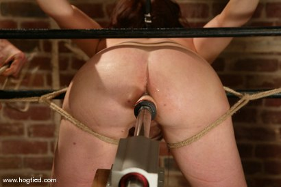 Photo number 10 from Babydoll shot for Hogtied on Kink.com. Featuring Babydoll in hardcore BDSM & Fetish porn.