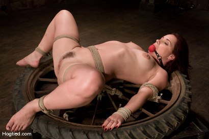 Photo number 10 from Olga Cabaeva <br>Can't Get Enough shot for Hogtied on Kink.com. Featuring Olga Cabaeva in hardcore BDSM & Fetish porn.