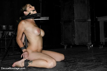 Photo number 14 from Teapot 2: The Explosion shot for Device Bondage on Kink.com. Featuring Felony in hardcore BDSM & Fetish porn.