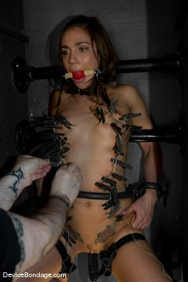 Photo number 7 from CAN A GIRLS <br>Dakoda Brookes and Eve Lei shot for Device Bondage on Kink.com. Featuring Dakoda Brookes and Eve Lei in hardcore BDSM & Fetish porn.