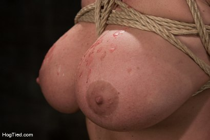 Photo number 6 from Christina Carter: NON STOP orgasmic shoot!  Need I say more? shot for Hogtied on Kink.com. Featuring Christina Carter in hardcore BDSM & Fetish porn.