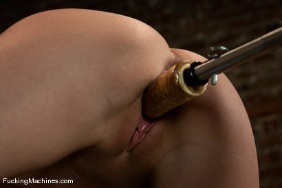 Photo number 11 from Local College Student - Jesse Cox shot for Fucking Machines on Kink.com. Featuring Jessie Cox in hardcore BDSM & Fetish porn.