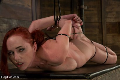 Photo number 13 from Berlin:  The EXTREME Bitch is back! shot for Hogtied on Kink.com. Featuring Mz Berlin in hardcore BDSM & Fetish porn.