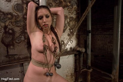 Photo number 8 from Pain Slut! :  Sister Dee is pulled three ways shot for Hogtied on Kink.com. Featuring Sister Dee in hardcore BDSM & Fetish porn.