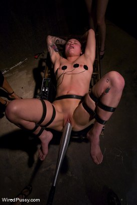 Photo number 9 from Interrogation shot for Wired Pussy on Kink.com. Featuring Syd Blakovich, Isis Love, Maitresse Madeline Marlowe and Princess Donna Dolore in hardcore BDSM & Fetish porn.