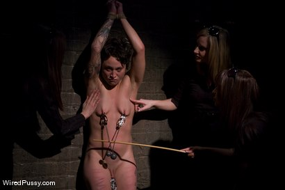 Photo number 3 from Interrogation shot for Wired Pussy on Kink.com. Featuring Syd Blakovich, Isis Love, Maitresse Madeline Marlowe and Princess Donna Dolore in hardcore BDSM & Fetish porn.