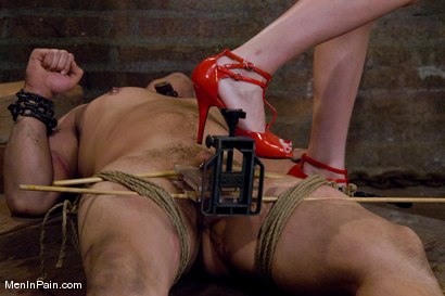 Photo number 12 from Training the Basement Slave shot for Men In Pain on Kink.com. Featuring Maitresse Madeline Marlowe  and Orlando in hardcore BDSM & Fetish porn.