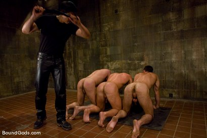 Photo number 14 from Les Trois Petits Cochons shot for Bound Gods on Kink.com. Featuring Xavier St-Jude, Kurt Weber and Tober Brandt in hardcore BDSM & Fetish porn.