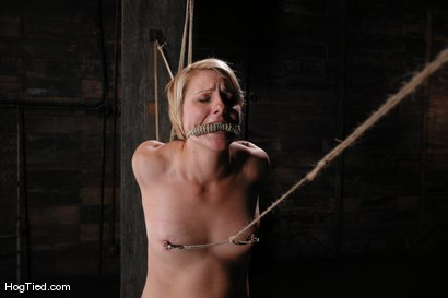 Photo number 10 from Vendetta is back!  She gets fucked & beat for her birthday shot for Hogtied on Kink.com. Featuring Vendetta in hardcore BDSM & Fetish porn.