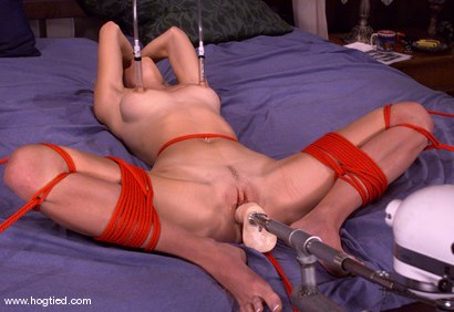 Photo number 9 from Phoenix shot for Hogtied on Kink.com. Featuring Phoenix in hardcore BDSM & Fetish porn.