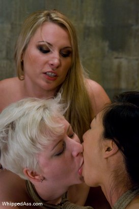 Photo number 14 from Companion Bitches shot for Whipped Ass on Kink.com. Featuring Cherry Torn, Harmony and Tia Ling in hardcore BDSM & Fetish porn.