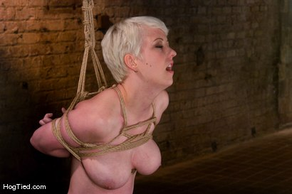 Photo number 7 from Cherry Torn: Tomboy with the body to kill for shot for Hogtied on Kink.com. Featuring Cherry Torn in hardcore BDSM & Fetish porn.