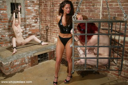 Photo number 8 from Chanta-Rose, Kym Wilde and Cloei shot for Whipped Ass on Kink.com. Featuring Chanta-Rose, Kym Wilde and Cloei in hardcore BDSM & Fetish porn.