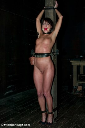 "Photo number 2 from ""The French Connection"" -<br><br>-Countdown to Relaunch - 4 of 20 shot for Device Bondage on Kink.com. Featuring Cecilia Vega in hardcore BDSM & Fetish porn."