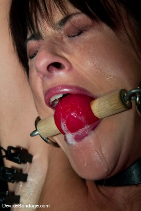 "Photo number 3 from ""The French Connection"" -<br><br>-Countdown to Relaunch - 4 of 20 shot for Device Bondage on Kink.com. Featuring Cecilia Vega in hardcore BDSM & Fetish porn."