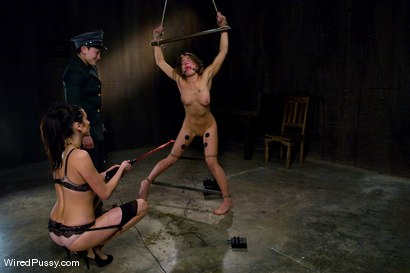 Photo number 8 from THE NEW COLLECTION: PART 1 shot for Wired Pussy on Kink.com. Featuring Vai, Princess Donna Dolore and Syd Blakovich in hardcore BDSM & Fetish porn.