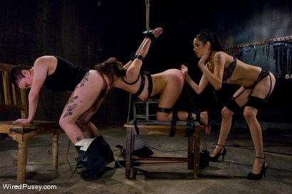 Photo number 11 from THE NEW COLLECTION: PART 1 shot for Wired Pussy on Kink.com. Featuring Vai, Princess Donna Dolore and Syd Blakovich in hardcore BDSM & Fetish porn.