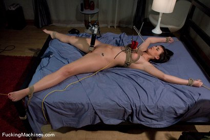 Photo number 3 from Brooke Adams - bound and machined shot for Fucking Machines on Kink.com. Featuring Brooke Lee Adams in hardcore BDSM & Fetish porn.