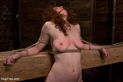 Photo number 13 from Hot Blooded Readhead Rita in for her first HT fucking! shot for Hogtied on Kink.com. Featuring Rita Seagrave in hardcore BDSM & Fetish porn.
