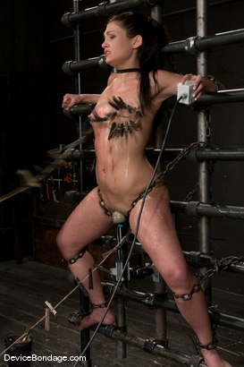 Photo number 14 from Jade Indica <br> Oiled, fucked, bound and tortured.<br>Countdown to Relaunch - 5 of 20 shot for Device Bondage on Kink.com. Featuring Miss Jade Indica in hardcore BDSM & Fetish porn.
