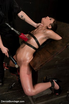 Photo number 4 from Jade Indica <br> Oiled, fucked, bound and tortured.<br>Countdown to Relaunch - 5 of 20 shot for Device Bondage on Kink.com. Featuring Miss Jade Indica in hardcore BDSM & Fetish porn.