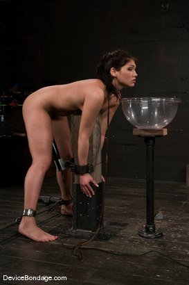 Photo number 6 from Jade Indica <br> Oiled, fucked, bound and tortured.<br>Countdown to Relaunch - 5 of 20 shot for Device Bondage on Kink.com. Featuring Miss Jade Indica in hardcore BDSM & Fetish porn.