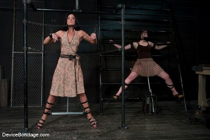 Photo number 1 from Two in a cage is worth more<br>than one with a shaved bush. <br>-Countdown to Relaunch - 6 of 20 shot for Device Bondage on Kink.com. Featuring India Summer and Brooke Lee Adams in hardcore BDSM & Fetish porn.
