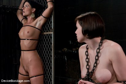 Photo number 8 from Two in a cage is worth more<br>than one with a shaved bush. <br>-Countdown to Relaunch - 6 of 20 shot for Device Bondage on Kink.com. Featuring India Summer and Brooke Lee Adams in hardcore BDSM & Fetish porn.