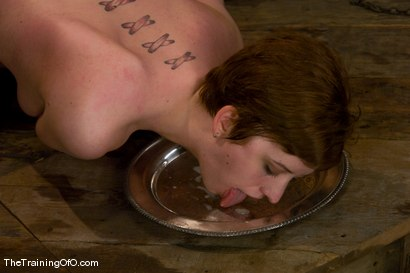 Photo number 14 from The Training of Cherry Torn, Day Six shot for The Training Of O on Kink.com. Featuring Cherry Torn, Maestro and India Summer in hardcore BDSM & Fetish porn.