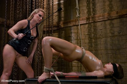 Photo number 2 from The Virgin shot for Wired Pussy on Kink.com. Featuring Harmony and Rebecca Blue in hardcore BDSM & Fetish porn.