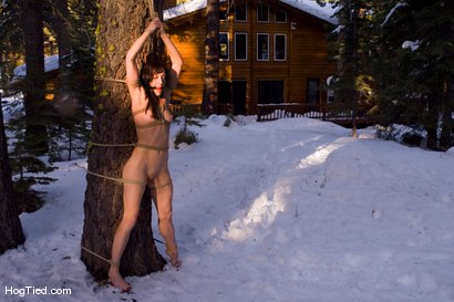 Photo number 5 from Tahoe: Exiled from Dick Mountain pt 4: Busy day out doors shot for Hogtied on Kink.com. Featuring Kristine, Dia Zerva, Amber Keen and Nina in hardcore BDSM & Fetish porn.