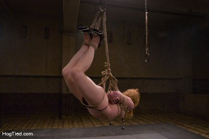 Photo number 5 from Madison... Hot fucking redhead with a desire for painful bondage shot for Hogtied on Kink.com. Featuring Madison Young in hardcore BDSM & Fetish porn.