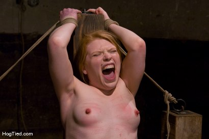 Photo number 8 from Madison... Hot fucking redhead with a desire for painful bondage shot for Hogtied on Kink.com. Featuring Madison Young in hardcore BDSM & Fetish porn.
