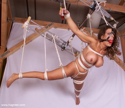 Photo number 6 from Shay Sights shot for Hogtied on Kink.com. Featuring Shay Sights in hardcore BDSM & Fetish porn.
