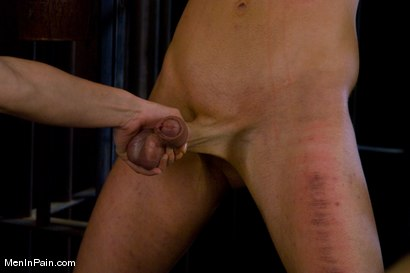 Photo number 8 from Bitch-boy Hunting shot for Men In Pain on Kink.com. Featuring Dean Strong and Harmony in hardcore BDSM & Fetish porn.